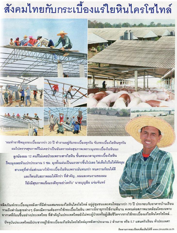 สังคมไทยกับกระเบื้องแร่ใยหินไครโซไทล์